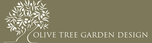 Olive Tree Garden Design